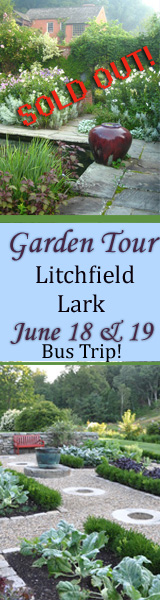 dig it friends of frelinghuysen arboretum ct overnight garden tour litchfirld county